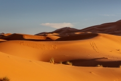 Bild 9 Spuren im Sand